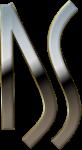 ds pulitura metalli brescia logo